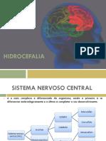 Apresentação Hidrocefalia
