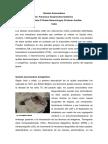 quistes_aracnoideos.pdf