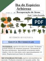 Aula- Espécies Arboreas.pdf