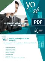 Ciclo de Vida de Las Industrias_estrategia