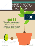 20160502+Avocado+E-book+by+desima+dot+co