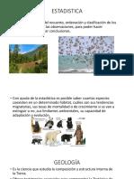 Ecologia y Sus Ramas