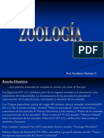 GENERALIDADES DE ZOOLOGIA