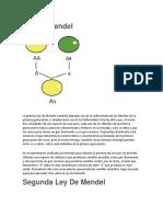 5_Ley_De_Mendel