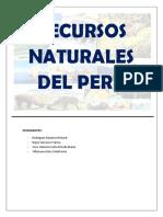 Recursos Naturales Del Perú - Ing Ambiental