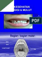 Copy of Dokcil.kesgILUT Warna