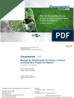 Manual de identificação de insetos e outros invertebrados pragas do feijoeiro.pdf