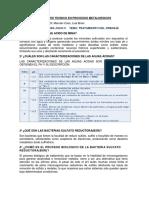 II Seminario Tecnico en Procesos Metaluergicos Marce
