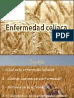 efermedadceliaca-120423092436-phpapp01