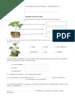 EVALUACION DE CIENCIAS NATURALES.docx
