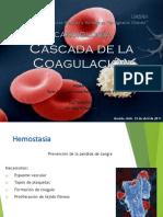 cascadadecoagulacin-120315183232-phpapp01.pptx