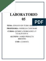 Cuarto Laboratorio de Quimica Inorganica