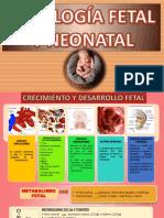 Fisiolog Fetal y Neonatal 1