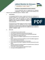 TDR ASILLO.docx