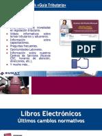 Cope Libros y Registros Electrónicos