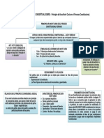 Tarea Semana 3 - Mapa Conceptual - Iura Novit Curia Proceso Constitucional