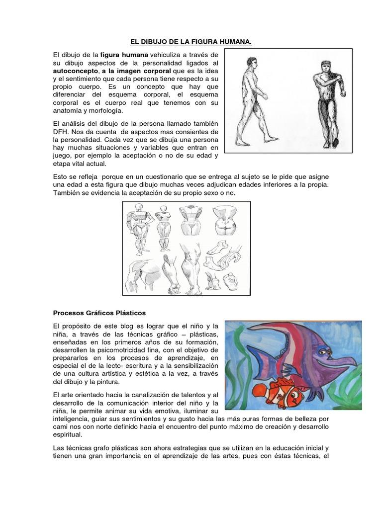 Moderno Definir La Anatomía Inferiores Modelo - Imágenes de Anatomía ...