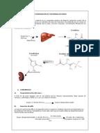 como disminuir el acido urico del cuerpo mejillones acido urico valores normales del acido urico en hombres
