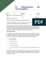 Determinación Del Metabolismo Energético NTP 323