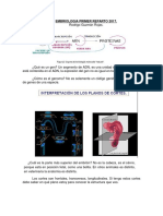 Resumen Embriologia Primer Reparto.