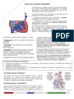 326263269-EsquemaAnatomiadelCorazon-docx.pdf