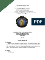 LP Vulnus Laceratum