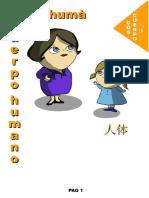 Diccionari visual_senzill.pdf