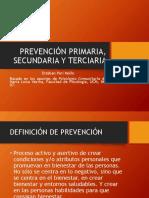 1-Af Descripci{on de Programas de Prevención y Modelos de Intervención - Copia