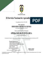 Curso básico puente grúa Heber Hernando Riascos Mendez.pdf
