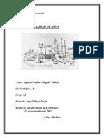 Calidad Del Agua Informe 8
