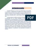 Datos Objetivos y Subjetivos de Enfermeria de Luz Tec Terminado