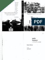 MASSEY, Doreen - Pelo espaco.pdf