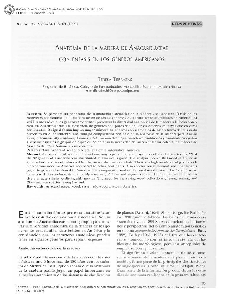 anatomia fam anacardiaceae.pdf