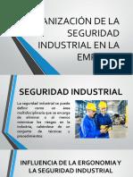 Organización de La Seguridad Industrial en La Empresa