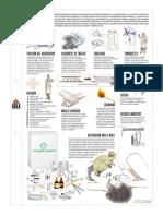 Seguridad Vial - Primeros Auxilios.pdf
