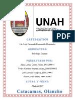 manual del estres.docx