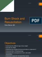 Burn Shock and Resuscitation Revised