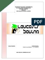 Leucosis Bovina (Yenny Solórzano-unellez)