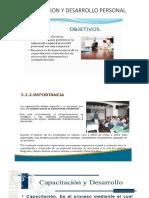 DESARROLLO Y CAPACIDAD PERSONAL.pptx