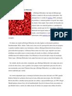 Conceito e História Biologia Molecular