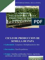 2 Aeroponia Rebeca Frisancho