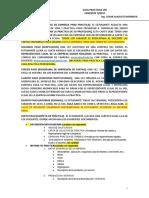 METODOLOGIA PRACTICAS UDI.docx