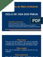 Zilda-Maria-Faria-Veloso-Ciclo-Vida-Pneus.pdf