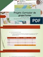 Projeto Curricular de Grupo