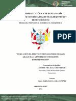 Tesis Evaluacion Del Efecto Antiinflamatorio Del Jengibre