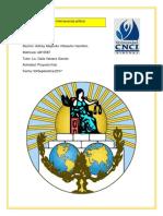 Proyecto Final Derecho Internacional Público
