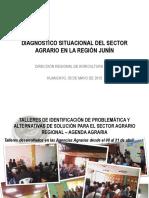 Diagnóstico Situacional del Sector Agrario en la región Junín.pdf