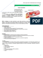 Histologia Tecido Sanguíneo