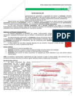 Histologia Tecido Muscular