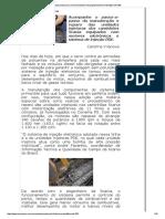 www.omecanico.com.br_modules_revista.pdf